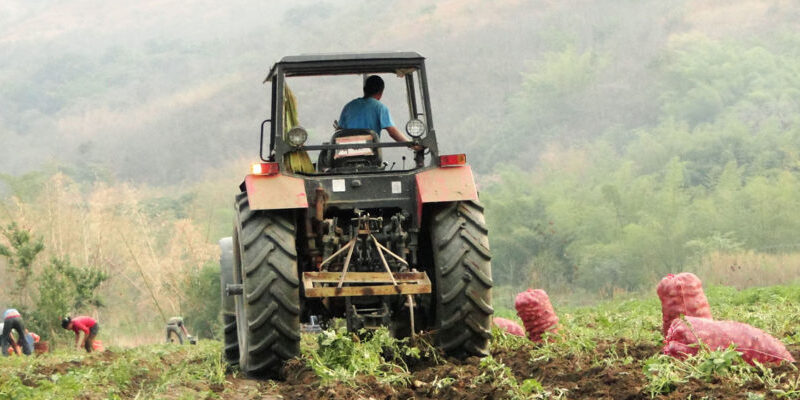 Con el 95% de la producción nacional en manos del sector privado hubo un crecimiento en diversos rubros